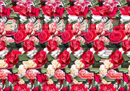 3D玫瑰花
